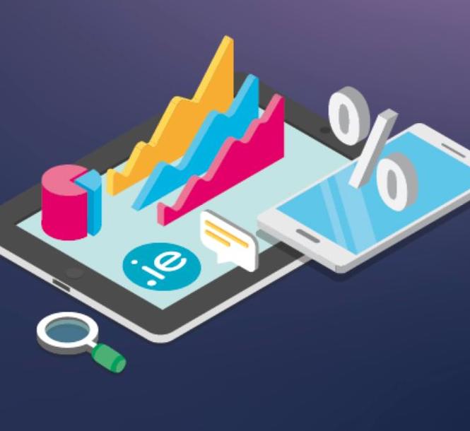 .IE Domain Profile Report 2020 Cover