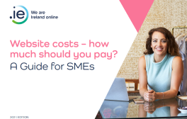 Website costs for SMEs in Ireland e-book cover